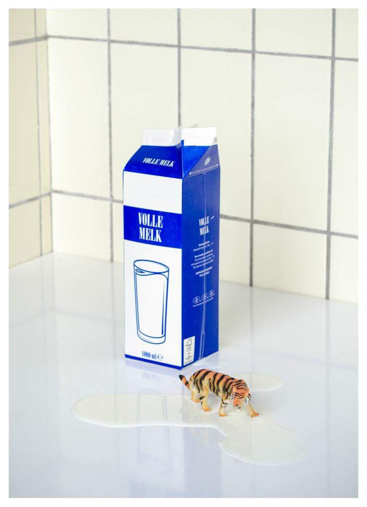 VHDG / SRV - heleen haijtema